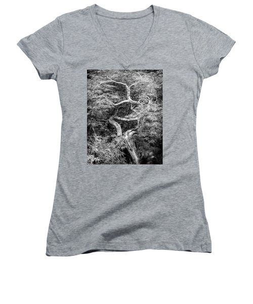 Women's V-Neck T-Shirt featuring the photograph Twisted Maple by Alan Raasch