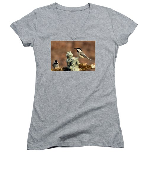 Two Black-capped Chickadees And Frog Women's V-Neck T-Shirt (Junior Cut) by Sheila Brown