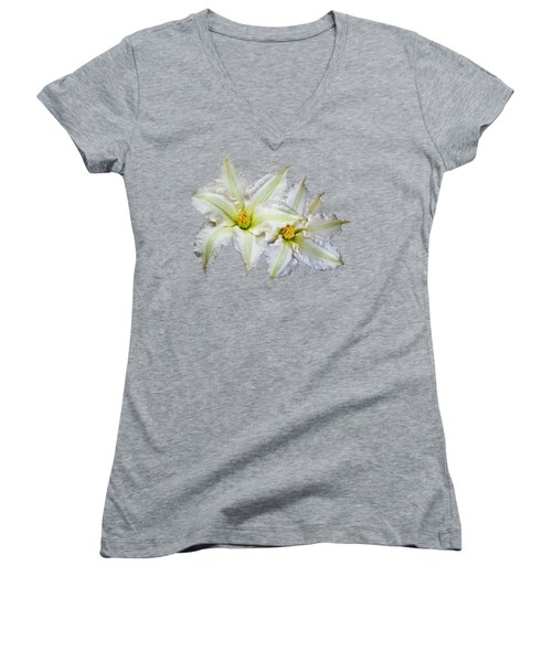 Two Clematis Flowers On Pale Purple Women's V-Neck T-Shirt (Junior Cut) by Jane McIlroy