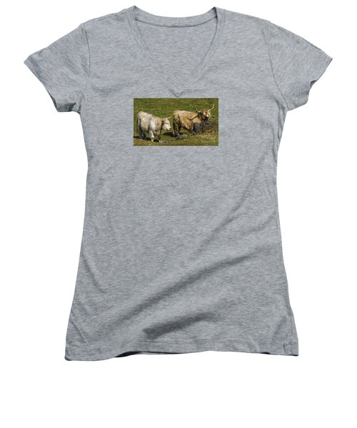 Women's V-Neck T-Shirt (Junior Cut) featuring the photograph Two Coos by Linsey Williams