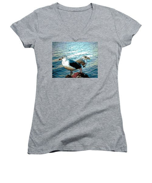 Two Gulls Women's V-Neck (Athletic Fit)