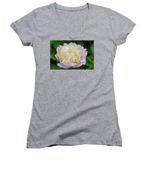 Women's V-Neck T-Shirt (Junior Cut) featuring the photograph Two-toned by Sandy Keeton