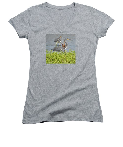 Women's V-Neck T-Shirt (Junior Cut) featuring the photograph Two Tri Colored Herons by Phyllis Beiser