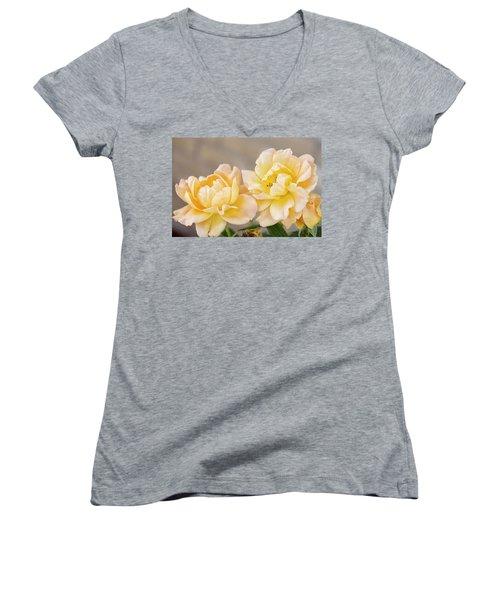 Two Yellow Sherberts Women's V-Neck T-Shirt (Junior Cut) by Joan Bertucci