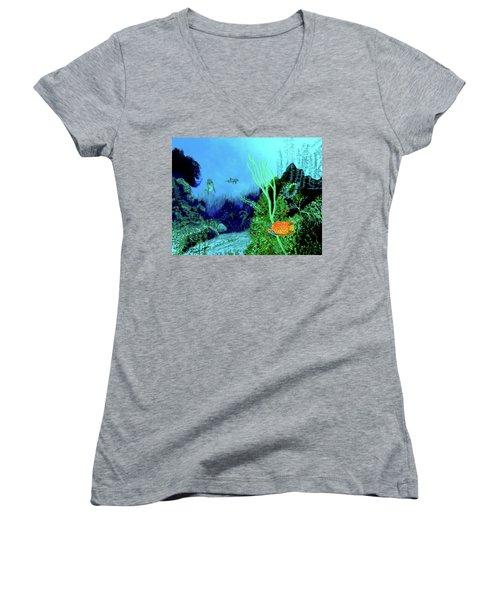 Underwater Women's V-Neck T-Shirt (Junior Cut) by Stan Hamilton