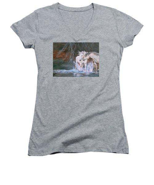 Unspoken Persuasion Women's V-Neck T-Shirt