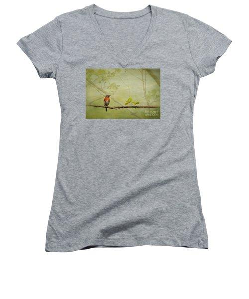 Until Spring Women's V-Neck T-Shirt