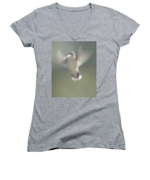 Untitled Hummingbird Women's V-Neck