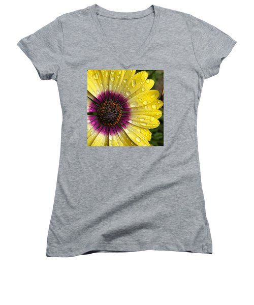 Daisy Up Close  Women's V-Neck (Athletic Fit)