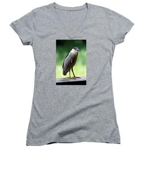 Upstanding Heron Women's V-Neck