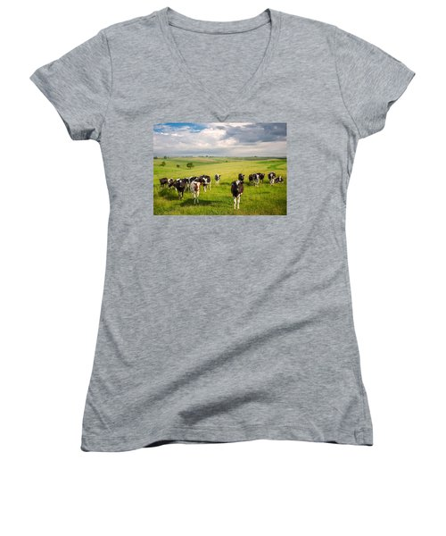 Valley Of The Cows Women's V-Neck
