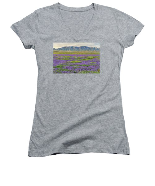 Valley Phacelia And Caliente Range Women's V-Neck T-Shirt (Junior Cut) by Marc Crumpler