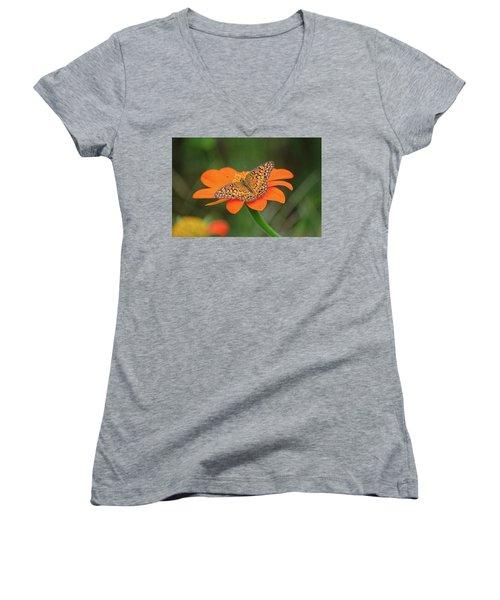 Variegated Fritillary On Flower Women's V-Neck T-Shirt (Junior Cut) by Ronda Ryan