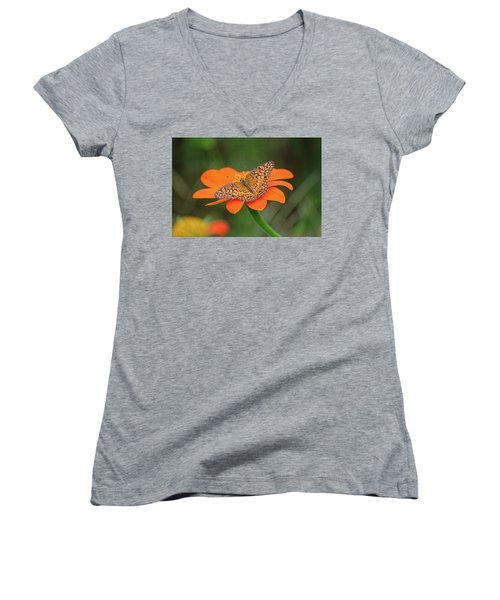 Variegated Fritillary On Flower Women's V-Neck (Athletic Fit)