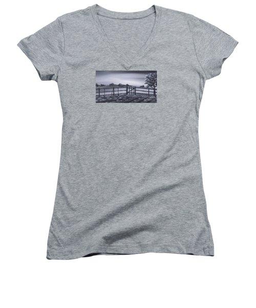 Vegetable Plot Women's V-Neck T-Shirt (Junior Cut) by Kenneth Clarke