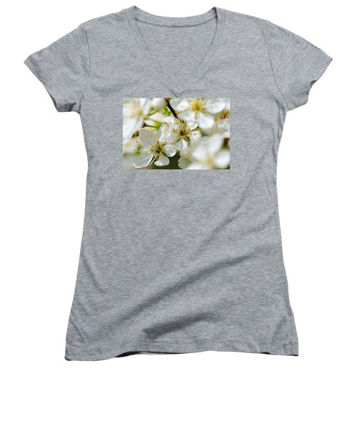 Vermont Apple Blossoms Women's V-Neck (Athletic Fit)