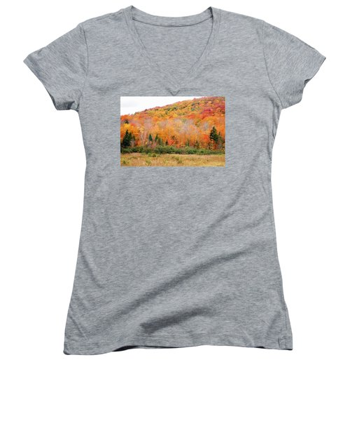 Vermont Foliage Women's V-Neck (Athletic Fit)