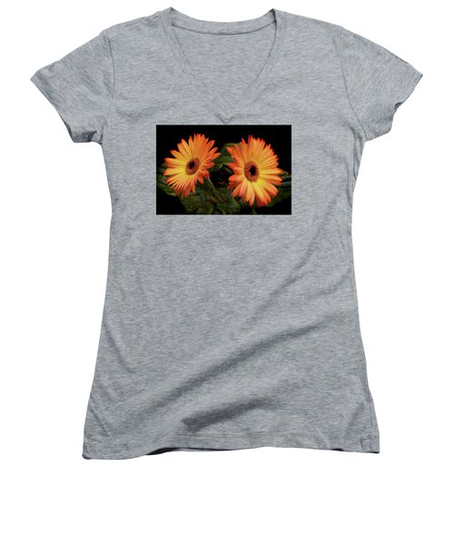 Vibrant Gerbera Daisies Women's V-Neck (Athletic Fit)