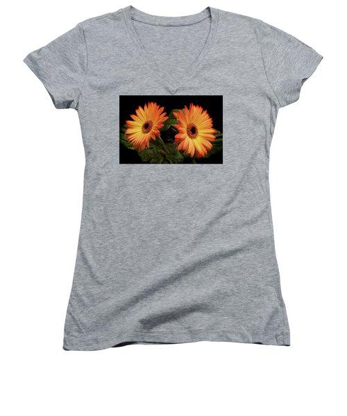 Vibrant Gerbera Daisies Women's V-Neck T-Shirt