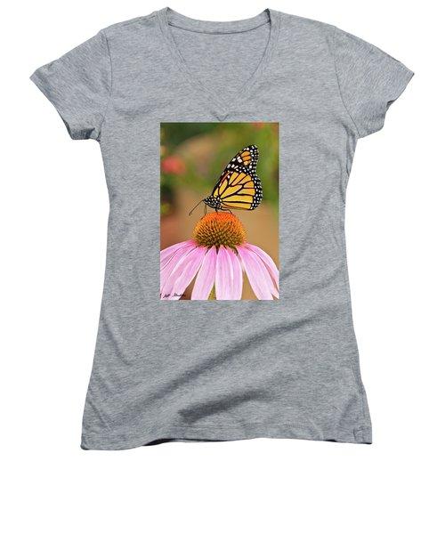 Monarch Butterfly On A Purple Coneflower Women's V-Neck