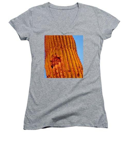 Victor's Golden Hour Women's V-Neck T-Shirt