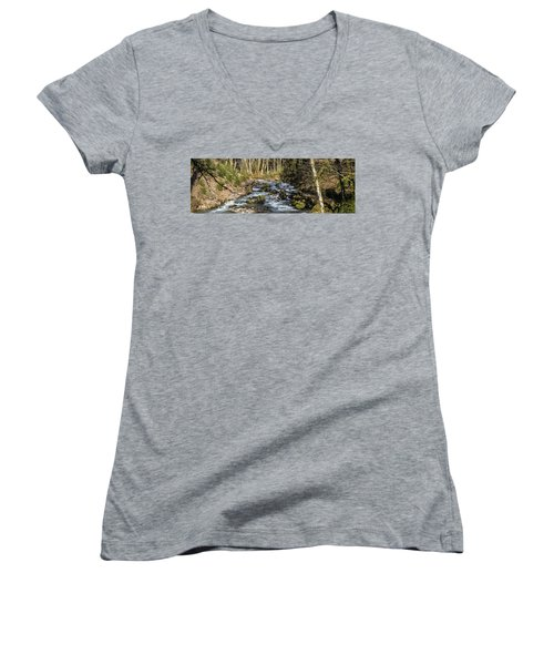 Views Of A Stream, II Women's V-Neck T-Shirt (Junior Cut) by Chuck Flewelling