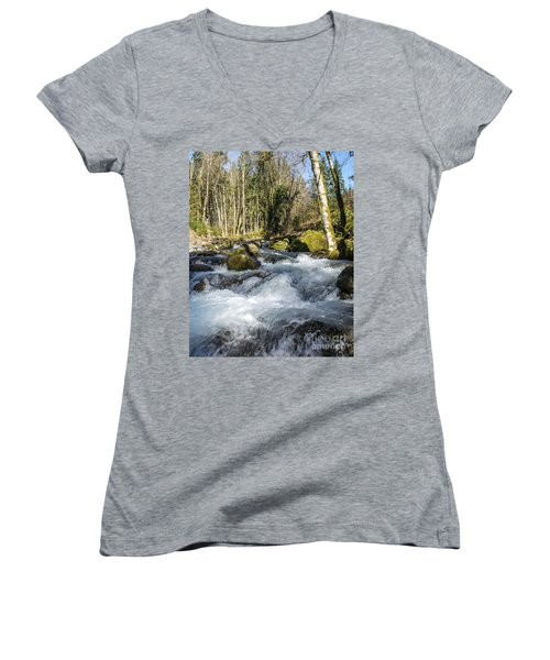 Views Of A Stream, IIi Women's V-Neck T-Shirt (Junior Cut) by Chuck Flewelling