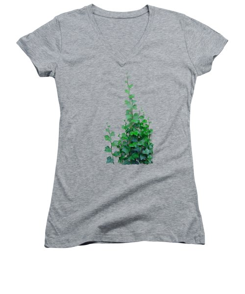 Vines By The Wall Women's V-Neck (Athletic Fit)