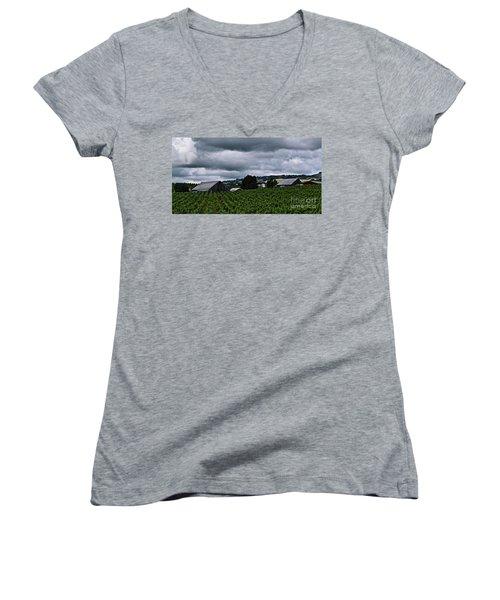Vineyards Women's V-Neck T-Shirt