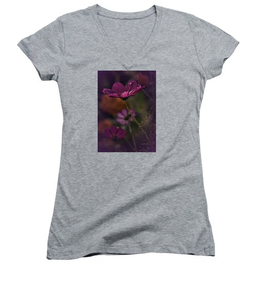 Vintage Cosmos Women's V-Neck T-Shirt