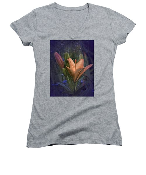 Vintage Lily 2017 No. 2 Women's V-Neck T-Shirt