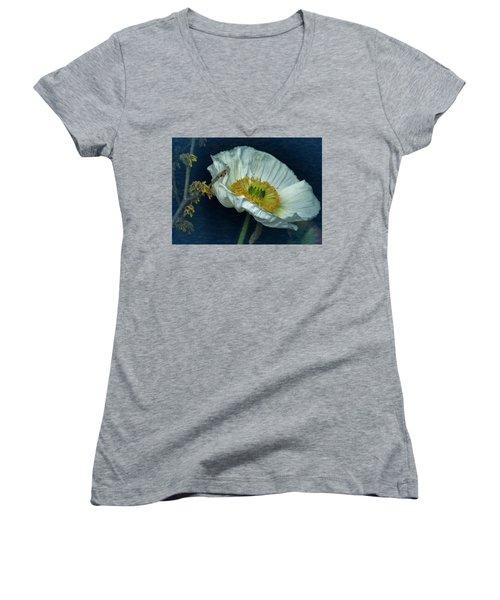 Vintage Poppy 2017 No. 2 Women's V-Neck T-Shirt