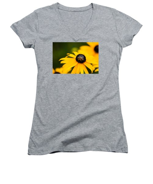 Visitor In The Garden Women's V-Neck T-Shirt (Junior Cut) by Shelby  Young