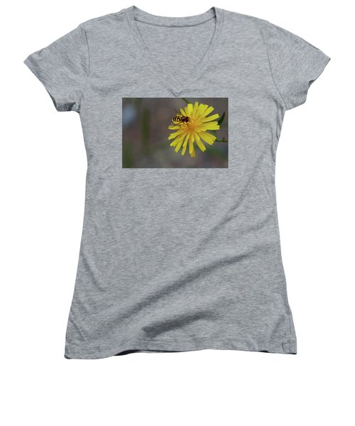 Visitor Women's V-Neck T-Shirt (Junior Cut) by Scott Holmes