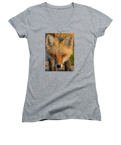 Vixen Women's V-Neck