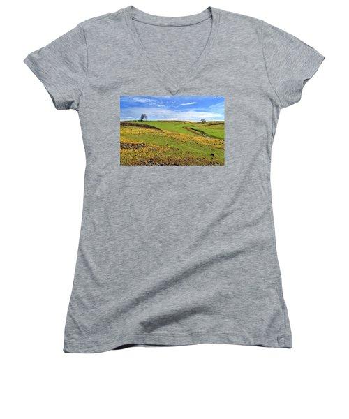 Volcanic Spring Women's V-Neck T-Shirt (Junior Cut) by James Eddy