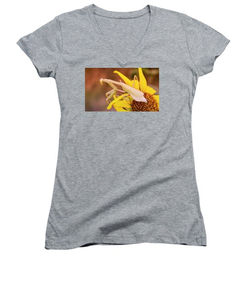 Waiting For A Beau Women's V-Neck T-Shirt