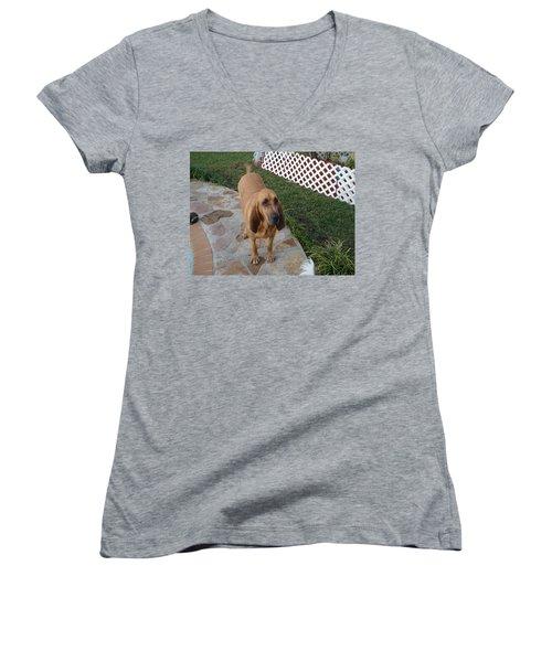 Waiting For Dinner Women's V-Neck T-Shirt (Junior Cut) by Val Oconnor
