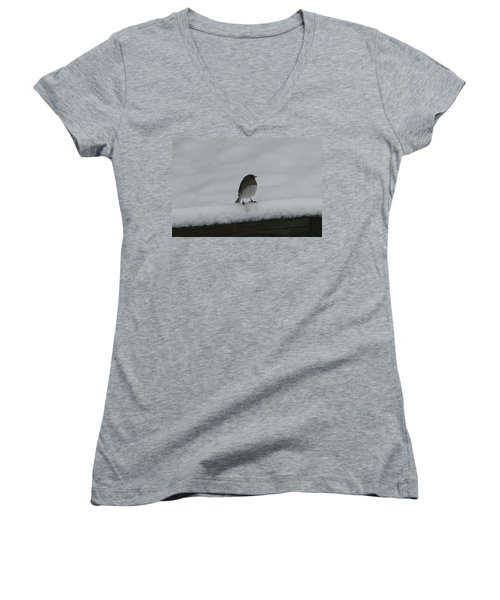 Women's V-Neck T-Shirt (Junior Cut) featuring the digital art Waiting For Spring by Barbara S Nickerson