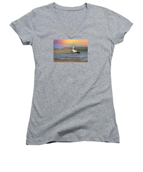 Women's V-Neck T-Shirt (Junior Cut) featuring the photograph Walking by Jivko Nakev