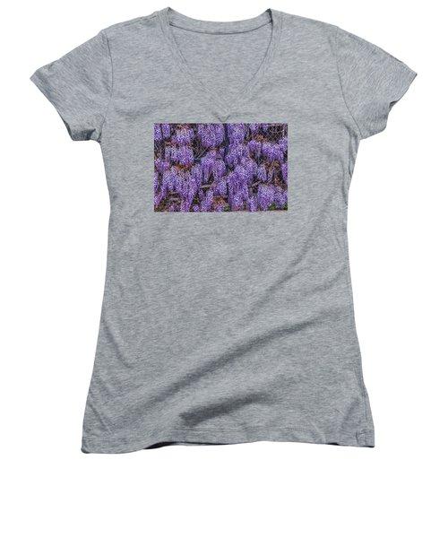 Wall Of Wisteria Women's V-Neck T-Shirt