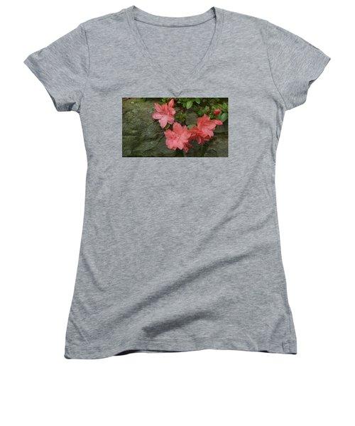 Wallflower Women's V-Neck T-Shirt