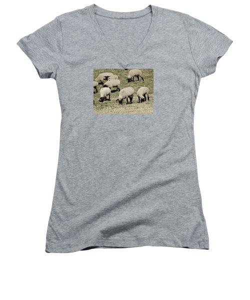 Women's V-Neck T-Shirt (Junior Cut) featuring the photograph Wandering Wool by J L Zarek