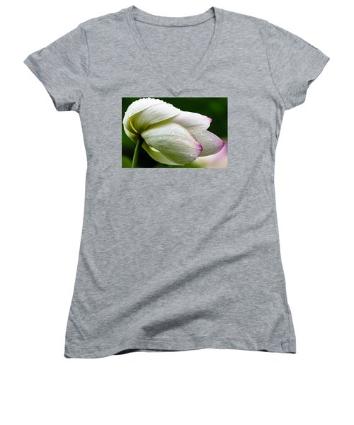 Warts And All Women's V-Neck