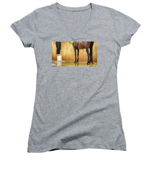 Washing A Horse Women's V-Neck