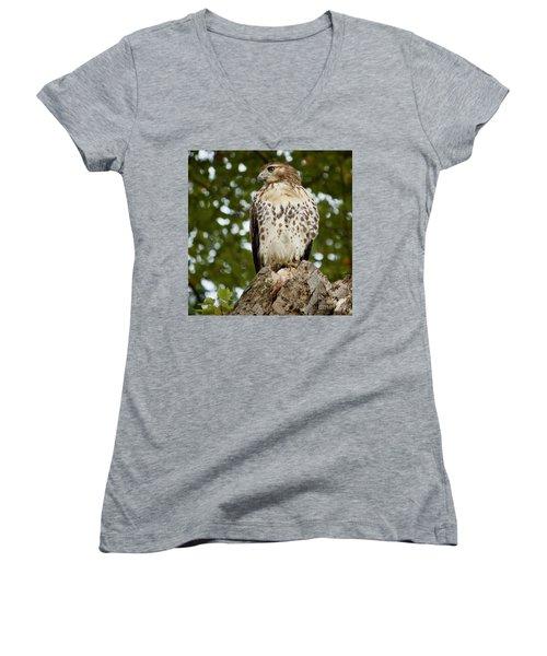 Watchful Eye Women's V-Neck T-Shirt (Junior Cut) by Jim Gillen