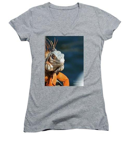 Women's V-Neck T-Shirt (Junior Cut) featuring the photograph Watchful Eye by Pamela Blizzard