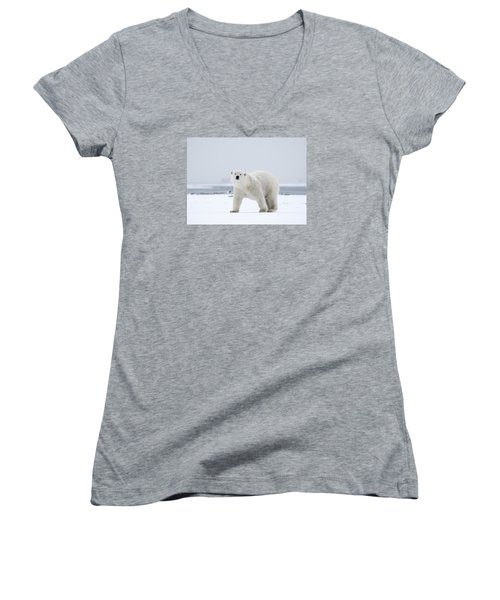 Watchful In The Arctic Women's V-Neck