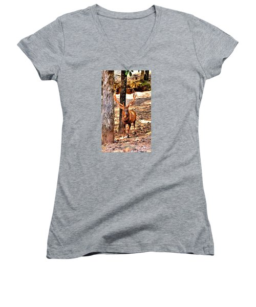 Watchfull Stag Women's V-Neck (Athletic Fit)