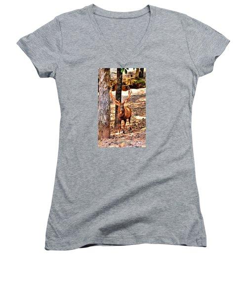 Watchfull Stag Women's V-Neck T-Shirt